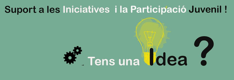 suport a les iniciatives web psd